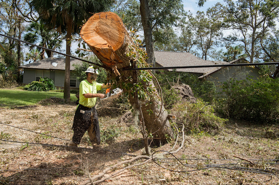 A worker repairs damaged lines in Yulee, Fla., restoring power to residents who had suffered outages for six days in the aftermath of Hurricane Irma. Photo: FEMA/J.T. Blatty