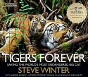 Cover of Tigers Forever