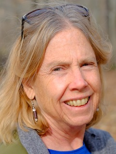 Author Ann Hoffner