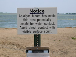 Warning sign in a beach on Lake Marion, Kansas.